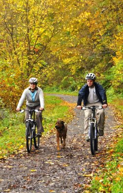 2 bikers on trail in fall with dog